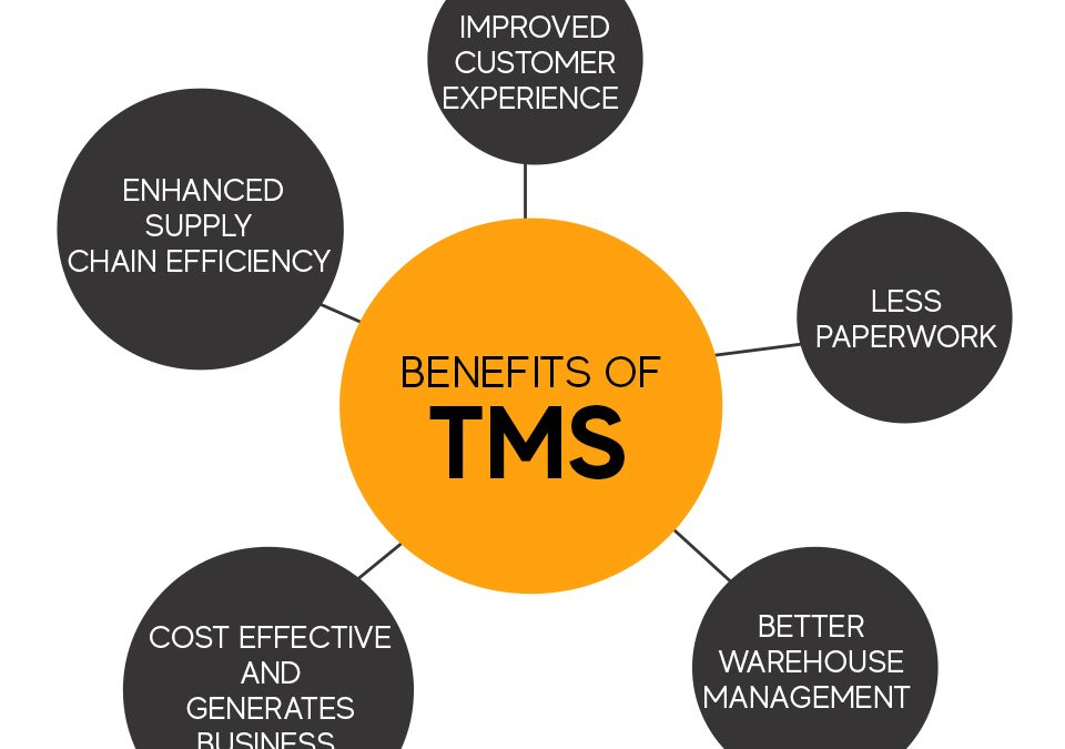 ADVANTAGES OF TRANSPORT MANAGEMENT SOLUTIONS (TMS)